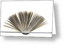 Open Book Greeting Card by Frank Tschakert