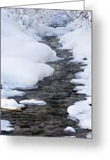 Open Running Creek With Snow Covered Greeting Card by Michael Interisano
