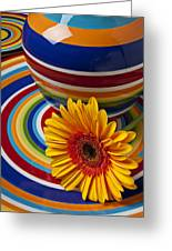 Orange Daisy With Plate And Vase Greeting Card by Garry Gay