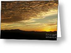 Orange Kiss Greeting Card by Alcina Morello