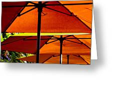 Orange Sliced Umbrellas Greeting Card by Karen Wiles