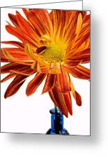 Orange You Happy Greeting Card by Susan Smith