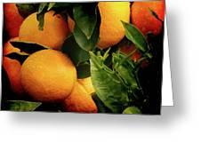 Oranges Greeting Card by Ernie Echols