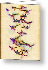 Orchids In Flight Greeting Card by Judi Bagwell