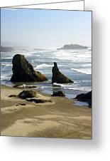 Oregon Coast 19 Greeting Card by Marty Koch