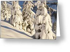 Oregon, United States Of America Snow Greeting Card by Craig Tuttle