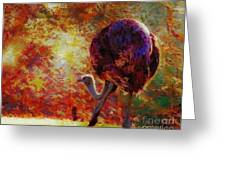 Ostrich II Greeting Card by Arne Hansen