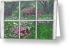Outside The Window Greeting Card by Peggy Roberson