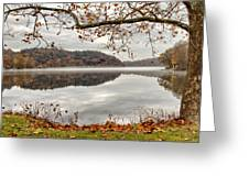 Overlooking The River Greeting Card by Karol  Livote