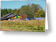 Painted Barn Greeting Card by Chris Anderson