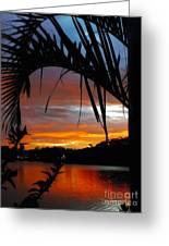 Palm Framed Sunset Greeting Card by Kaye Menner