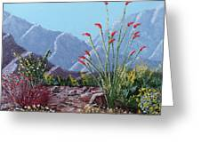Palm Springs Beauty Greeting Card by Jeff Owen