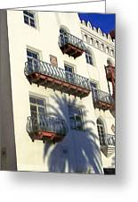 Palm Tree Shadow On The Wall Greeting Card by Patricia Taylor
