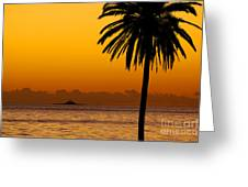 Palm Tree Sunset Greeting Card by Carlos Caetano