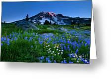 Paradise Garden Dawning Greeting Card by Mike  Dawson