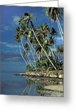 Paradise Greeting Card by Marc Bittan