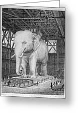 Paris: Elephant Monument Greeting Card by Granger