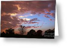 Park At Sunset Greeting Card by Susan Isakson