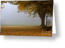 Park In Autumn Greeting Card by David Buffington