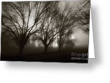 Park In Fog Greeting Card by Susan Isakson