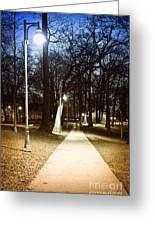 Park Path At Night Greeting Card by Elena Elisseeva