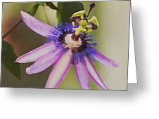 Passion Flower Greeting Card by Artist and Photographer Laura Wrede