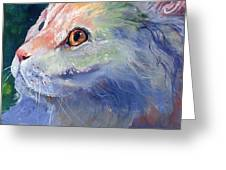 Pastel Persian Greeting Card by Sherry Shipley