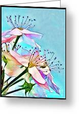 Pastel Petals Greeting Card by Judi Bagwell