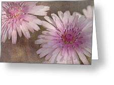 Pastel Pink Passion Greeting Card by Benanne Stiens