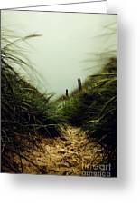 Path Through The Dunes Greeting Card by Hannes Cmarits