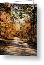 Path To Nowhere Greeting Card by Jai Johnson