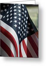 Patriotism Greeting Card by Jerry McElroy