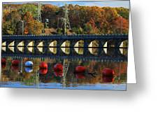 Patterns Of Reflection Greeting Card by Karol  Livote