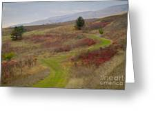Paved In Green Greeting Card by Idaho Scenic Images Linda Lantzy