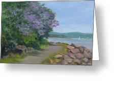 Pawlonia Along The Nyack Trail Greeting Card by Phyllis Tarlow