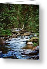 Peaceful Mountain River Greeting Card by Lisa Holmgreen