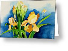 Peach Irises Greeting Card by Janis Grau