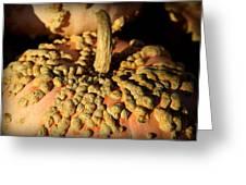 Peanut Pumpkins Greeting Card by Karen Wiles