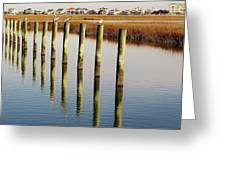 Pelican On Posts Greeting Card by Paulette Thomas