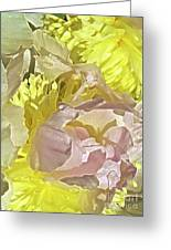Peony Perfect Greeting Card by Gwyn Newcombe