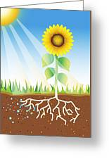 Photosynthesis, Artwork Greeting Card by David Nicholls