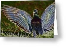 Pigeon Spirit Greeting Card by Deborah Benoit