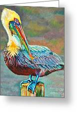 Pile High Pelican Greeting Card by Lisa Tygier Diamond