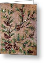 Pine Cones And Spruce Branches Greeting Card by Nancy Mueller