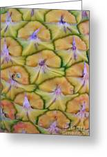 Pineapple Eyes Greeting Card by Mary Deal