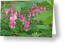 Pink Bleeding Heart Flowers - Dicentra Spectabilis Greeting Card by Mother Nature