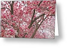 Pink Everywhere Greeting Card by Becky Lodes