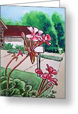 Pink Geranium Sketchbook Project Down My Street Greeting Card by Irina Sztukowski