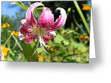 Pink Lily Greeting Card by Theresa Willingham