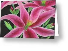 Pink Paradise Greeting Card by Kristi Roberts